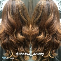 haircut,color,blowout, style by Erika Avendano